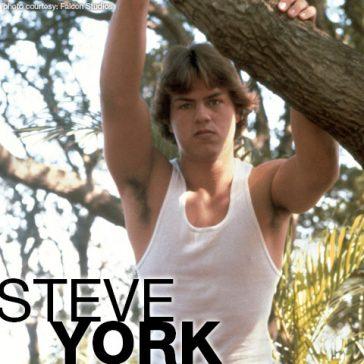 STEVE YORK