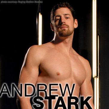 ANDREW STARK