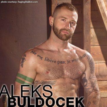 ALEKS BULLDOZER GAY