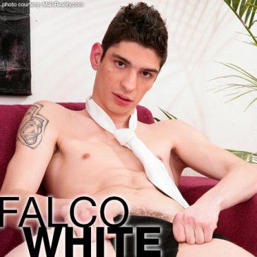 FALCO WHITE