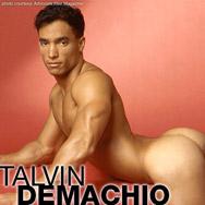 Talvin DeMachio Smooth Hard Muscle American Gay Porn Star 102859 gayporn star