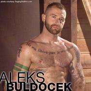Aleks Buldocek American Gay Porn Star 129057 gayporn star