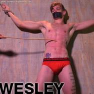 Wesley Young Blond American Gay Porn Guy 133626 gayporn star