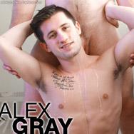 Alex Gray Falcon Studios American Gay Porn Star 134465 gayporn star