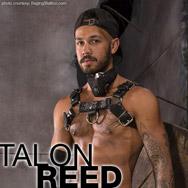 Talon Reed American Gay Porn Star 134602 gayporn star