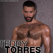 Teddy Torres American Gay Porn Star 134603 gayporn star