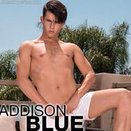 Addison Blue Uncut Slender American Gay Porn Star 134679 gayporn star
