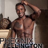 Pheonix Fellington Horse Hung Handsome Black American Gay Porn Star Gay Porn 134772 gayporn star