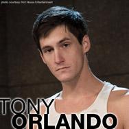Tony Orlando American Gay Porn Star 135251 gayporn star