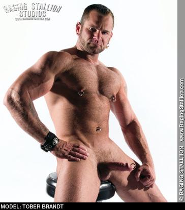 Tober Brandt Handsome Kinky American Muscle Gay Porn Star Gay Porn 100242 gayporn star