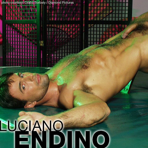 Luciano Endino Sexy Hungarian Hunk Gay Porn Star Gay Porn 100488 gayporn star