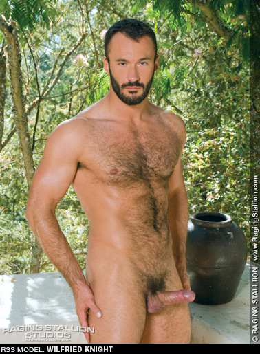 Wilfried Knight Handsome French Gay Porn Star gayporn star