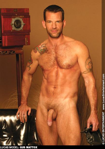 Gay Porn Star gayporn star Gus Mattox Handsome American Gay Porn Star Falcon Studios COLT Studio