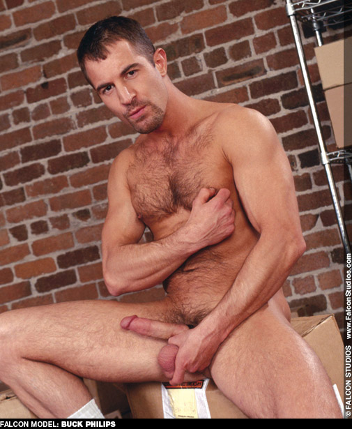 Buck Philips Scruffy American Sex Pig Gay Porn Star Gay Porn 100974 gayporn star
