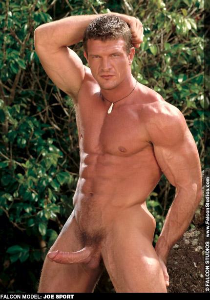 Joe Sport Falcon Studios American Muscle Hunk Gay Porn Star Gay Porn 101166 gayporn star