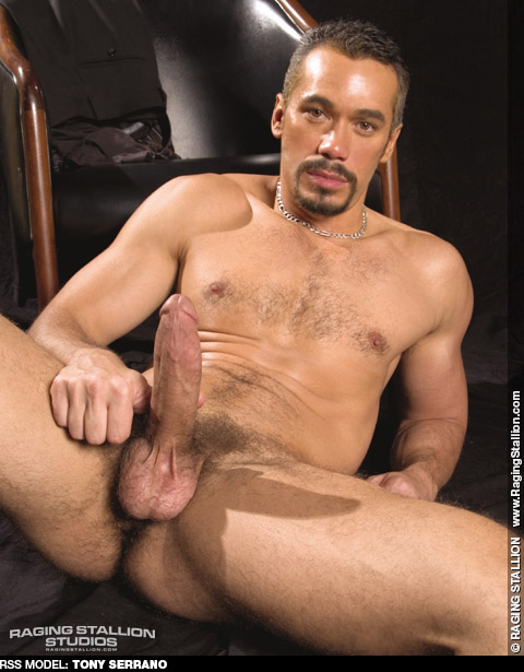 Tony Serrano Hung Handsome Latin American Gay Porn Star Gay Porn 106454 gayporn star