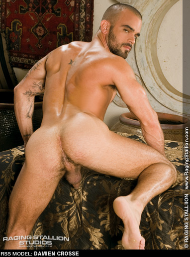 Damien Crosse Handsome Cuban American Gay Porn SuperStar Gay Porn 107374 gayporn star