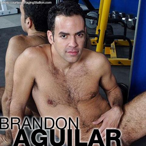 Brandon Aguilar Hairy American Gay Porn Star gayporn star