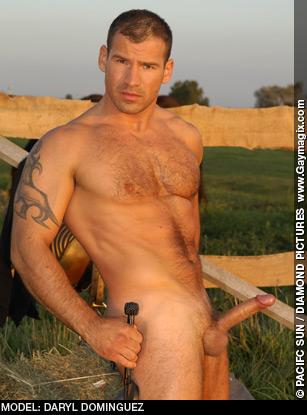 Daryl Dominguez Hungarain Gay Porn Star Flirt 4 Free Live Sex Solo Performer 109435 gayporn star