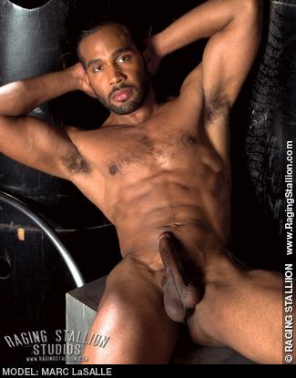 Marc LaSalle Dark Handsome American Gay Porn Star
