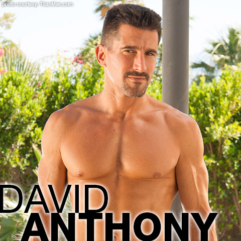 anthony star porn David gay