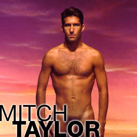 Mitch Taylor American Gay Porn Star Gay Porn 111371 gayporn star