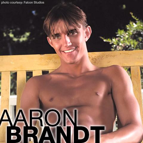 Aaron brandt gay pornstar