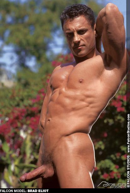 Brad Eliot Falcon Studios American Muscle Jock Gay Porn Star Gay Porn 111584 gayporn star