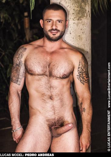 Pedro Andreas Handsome Brazilian Lucas Entertainment Gay Porn Star Gay Porn 111911 gayporn star