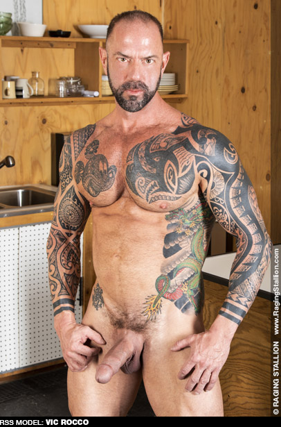 American Gay Porn Star gayporn star