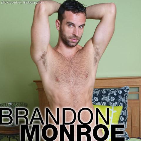 Brandon Monroe Hairy Handsome Hung American Gay Porn Star Gay Porn 113741 gayporn star