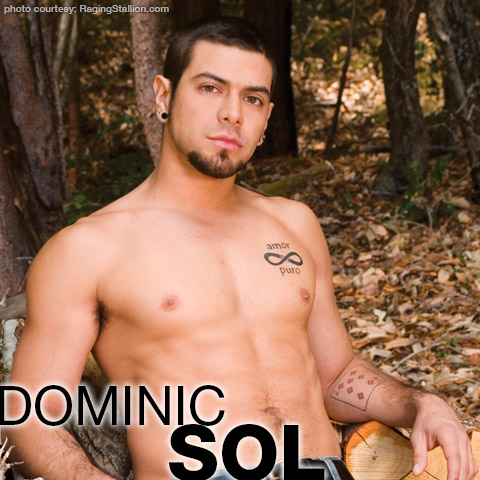 Dominic Sol Domonic Sol Handsome Muscle American Gay Porn Star Gay Porn 114330 gayporn star Gay Porn Performer