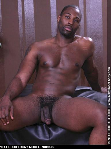 Nubius Handsome Hung Black American Gay Porn Star Gay Porn 117692 gayporn star