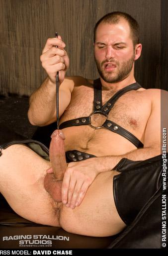David Chase Uncut Kinky American Gay Porn Star Gay Porn 118016 gayporn star
