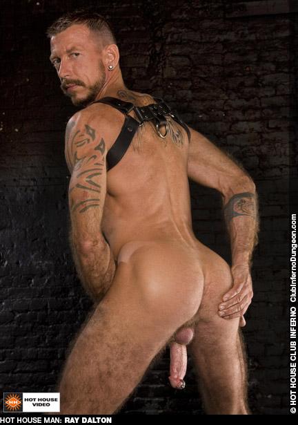 Ray Dalton American Gay Porn Star Gay Porn 120096 gayporn star