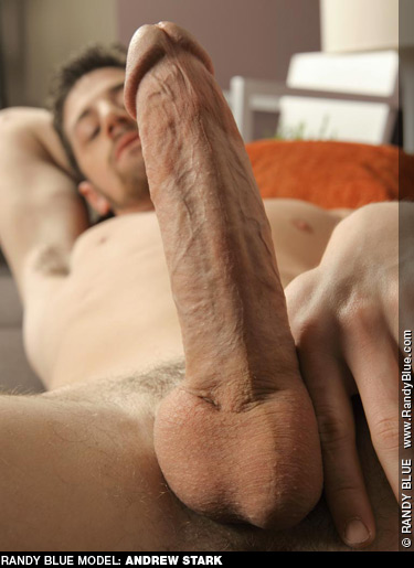 Andrew Stark Big Hard Cock Randy Blue Gay Porn Star Gay Porn 121733 gayporn star