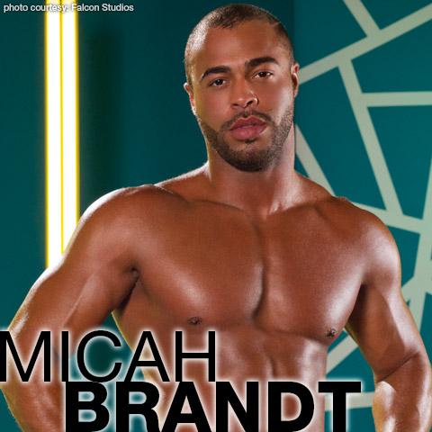 Micah Brandt Falcon Studios American Gay Porn Star Gay Porn 122196 gayporn star