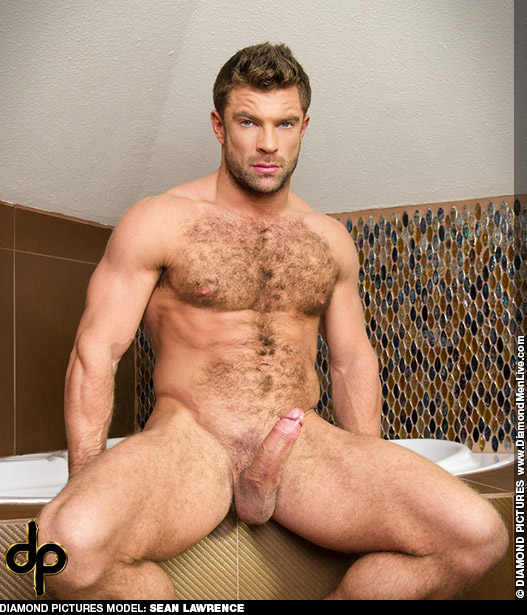 Sean Lawrence Handsome Hungarian Solo Performer & Model Gay Porn 124991 gayporn star