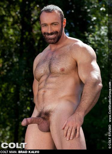 Brad Kalvo Muscle & Virile & Furry American Gay Porn Star Gay Porn 125216 gayporn star