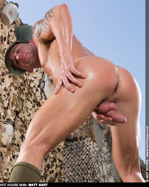 Matt Hart Hunky American Daddy Gay Porn Star Gay Porn 125852 gayporn star