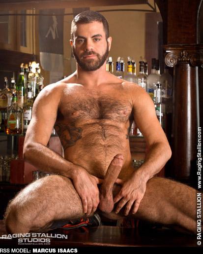 Marcus Isaacs Handsome American Gay Porn Star Gay Porn 127707 gayporn star