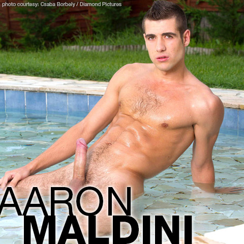 Aaron Maldini Hung Hungarian Csaba Borbely Solo Performer and Model Gay Porn 128632 gayporn star