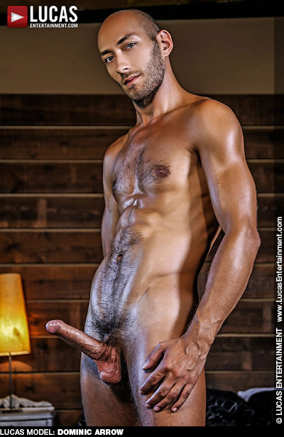 Dominic Arrow British Gay Porn Star Gay Porn 128957 gayporn star