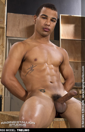 famous male puerto rican porn stars