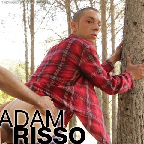 Adam Risso FuckerMate Spanish Gay Porn Star Gay Porn 130138 gayporn star