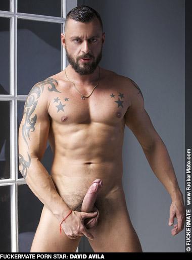 David Avila Spanish Gay Porn Daddy Hunk Gay Porn 130174 gayporn star