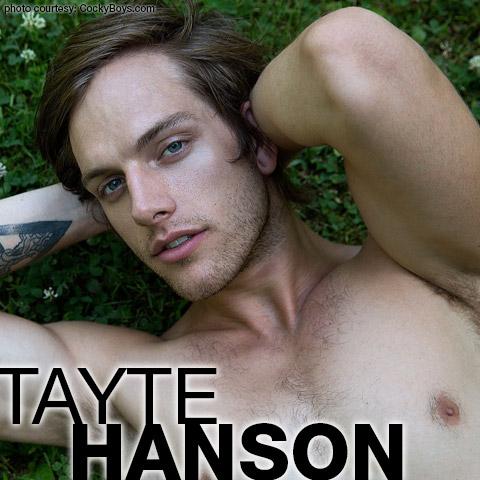 Tayte Hanson American Cockyboys Gay Porn Star Gay Porn 130905 gayporn star
