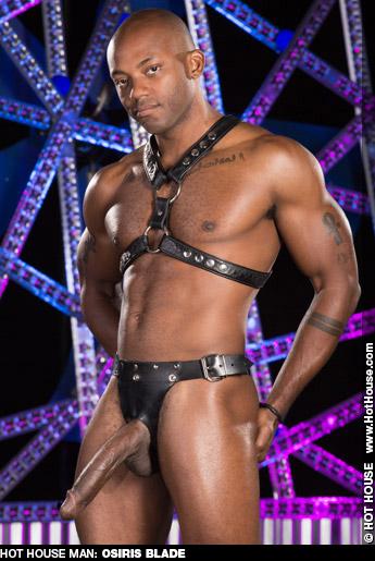 Osiris Blade Black American Muscle Gay Porn Star Gay Porn 131610 gayporn star