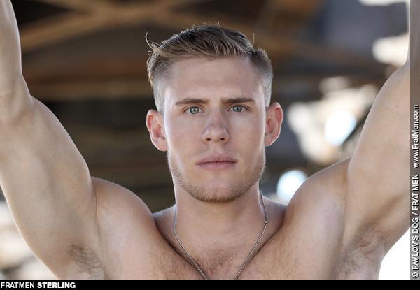 Fratmen Sterling American College Jock Gay Porn 131660 gayporn star