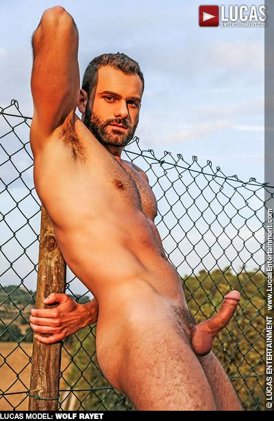 Wolf Rayet British Daddy Gay Porn Star Gay Porn 131688 gayporn star